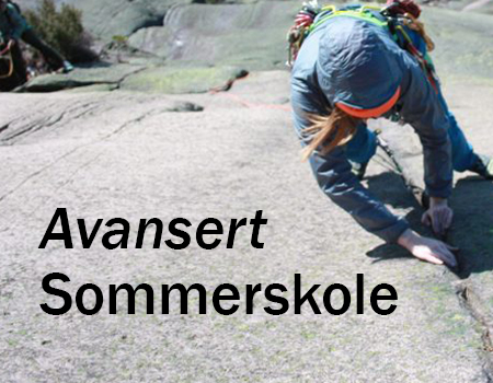 Bilde for Avansert Sommerskole